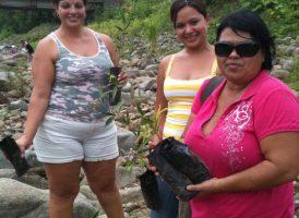 siembra-de-arboles-rio-uvita(3)